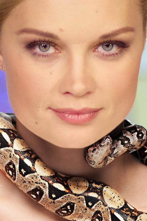 фото мамбы змеи