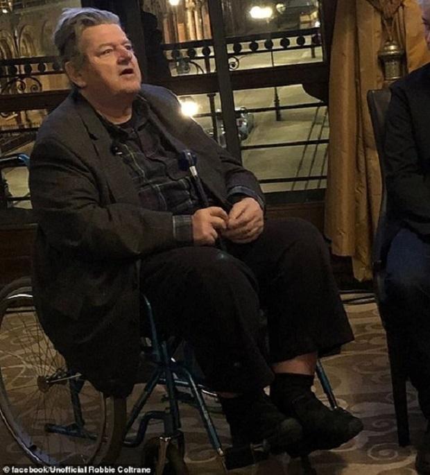 Робби Колтрейн, Гарри Поттер